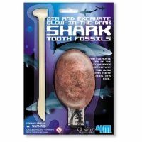 【4M】挖掘考古系列-鯊魚蛋 Dig a Glow Shark Tooth Fossils(00-05918)